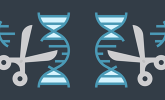 Measure twice, cut once: predicting gene editing outcomes